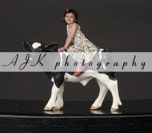 cow composite