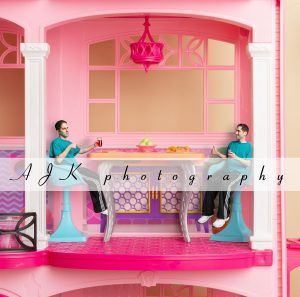 doll house composite