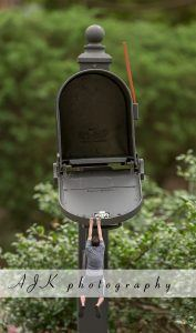 falling from mailbox composite