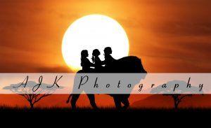 lion silhouette composite
